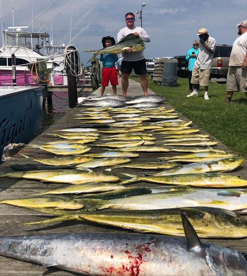 Skiligal Charters Fishing Reports | Skiligal Sportfishing